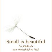 Schumacher 2013 - Small is beautiful